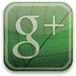 Stay Up to Date on Google +