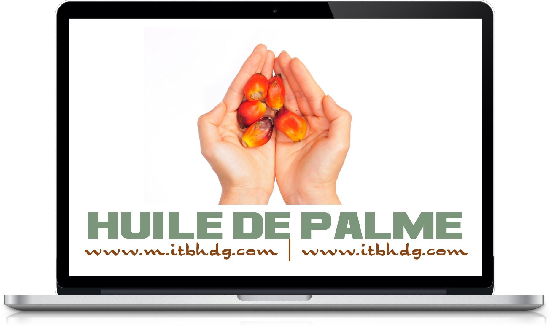 Huile de Palme Raffinée, Oléïne de Palme Raffinée, Huile de Palmiste Raffinée, Stéarine de Palme Raffinée, Huile de Palme Brute  | www.m.itbhdg.com | www.itbhdg.com