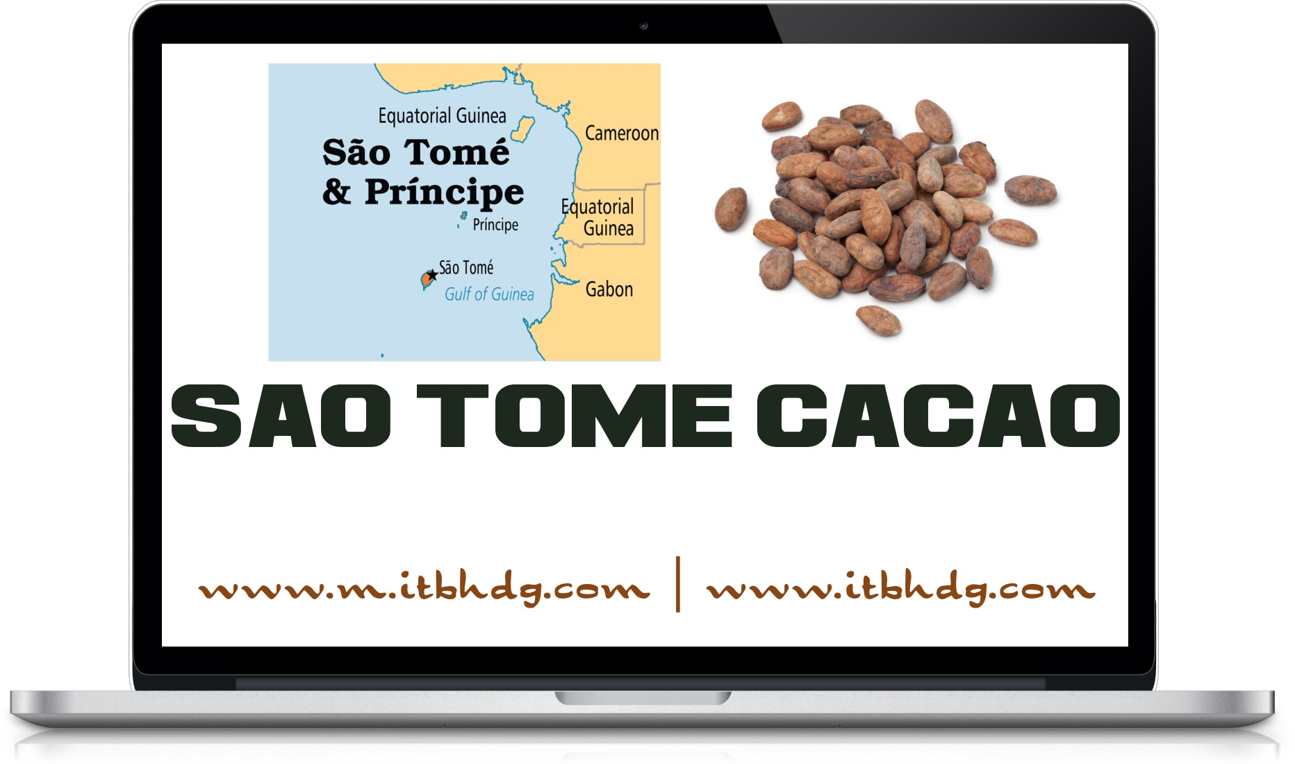 Best CIF Prices | Cacao (Cocoa) Beans | Free shipping